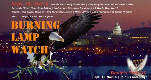 Burning-Lamp-Eagle
